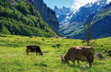 pixabay mountains-5290992