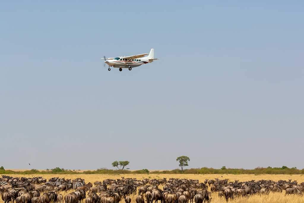 AA FLUG - Flugsafari in Tansania – Herzschlag der Wildnis