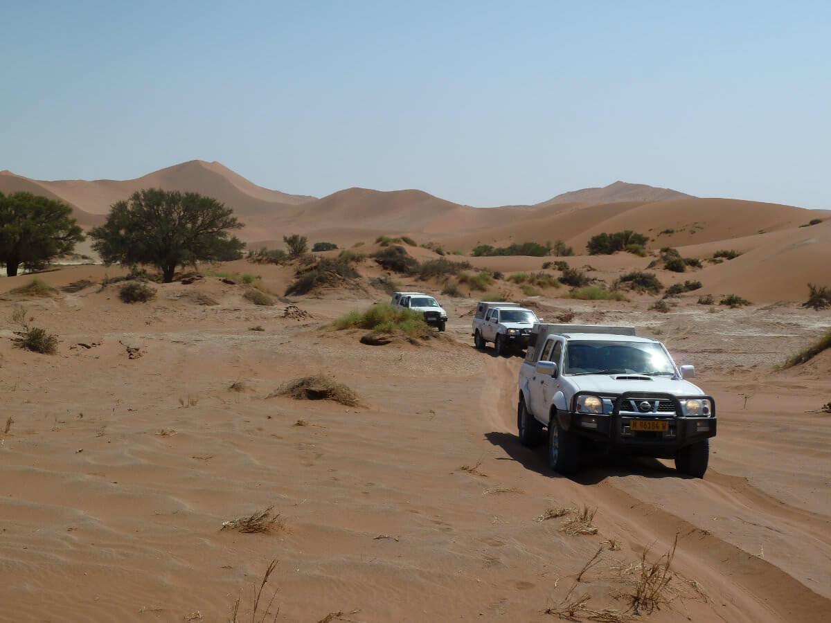 birgit 31 Michas Inforeise - Namibia hautnah