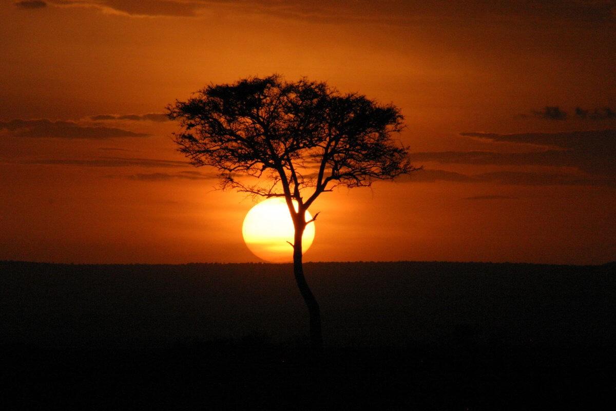pixabay masai mara 3518094 - Abenteuer  Tansania & Kenia