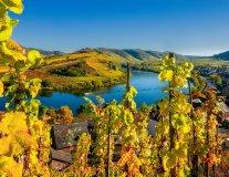Farbenfrohe Herbststimmung im Moseltal
